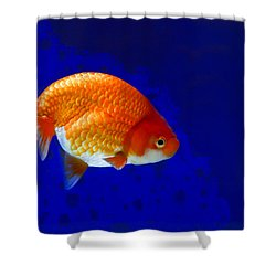 Lion Head Goldfish 6 Shower Curtain