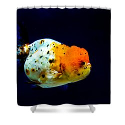 Lion Head Goldfish Shower Curtain
