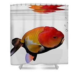 Lion-head Goldfish Shower Curtain by Corey Ford