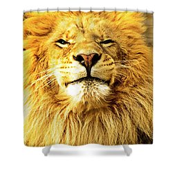 Shower Curtain featuring the photograph Lion King 1 by Ayasha Loya