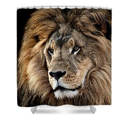 Lion King Of The Jungle 2 Shower Curtain