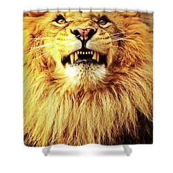 Shower Curtain featuring the photograph Lion King Smiling by Ayasha Loya