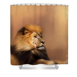 Shower Curtain featuring the photograph Lion Memories by Myrna Bradshaw