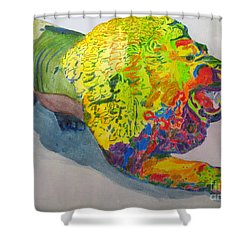 Shower Curtain featuring the painting Lion Of Judah by Sandy McIntire