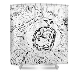 Lion Roar Drawing Shower Curtain