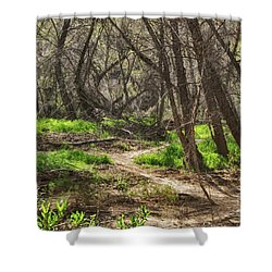 Lion Trail At Hassayampa Nature Reserve Shower Curtain by Anne Rodkin