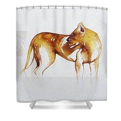 Lioness And Wildebeest Shower Curtain