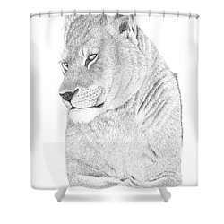 Lioness Shower Curtain by Patricia Hiltz