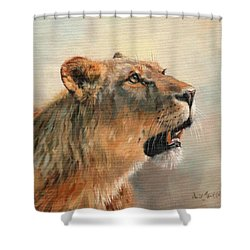 Shower Curtain featuring the painting Lioness Portrait 2 by David Stribbling