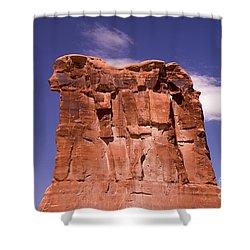 Lions Head Shower Curtain