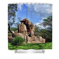 Shower Curtain featuring the photograph Lions On The Rock by B Wayne Mullins
