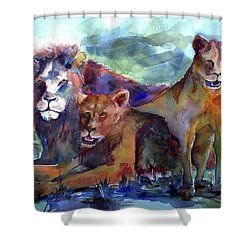 Lion's Play Shower Curtain