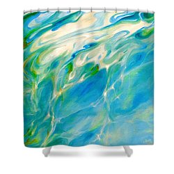 Liquid Assets Shower Curtain by Dina Dargo