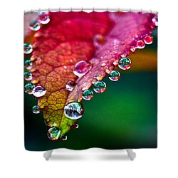 Liquid Beads Shower Curtain