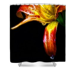 Shower Curtain featuring the photograph Liquid Lily by Cameron Wood