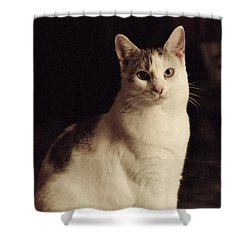 Lisa-lisa Posing Shower Curtain