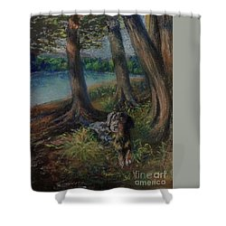 Listening To The Tales Of The Trees Shower Curtain