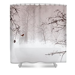 Listening Shower Curtain