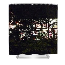 Shower Curtain featuring the photograph Lit Like Stained Glass by Felipe Adan Lerma