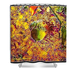 Little Acorn Shower Curtain by MaryLee Parker
