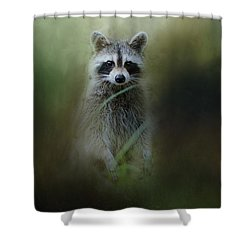Little Bandit Shower Curtain by Jai Johnson