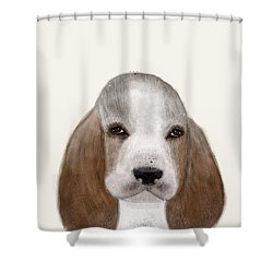 Shower Curtain featuring the painting Little Basset Hound by Bri B