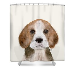 Shower Curtain featuring the painting Little Beagle by Bri B