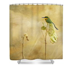 Little Bee-eater Shower Curtain by Kathy Adams Clark