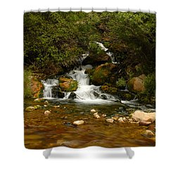 Little Big Creek Shower Curtain