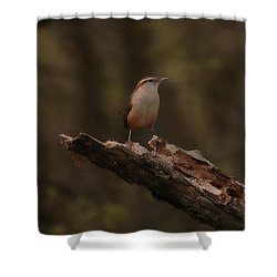 Little Big Stand Shower Curtain