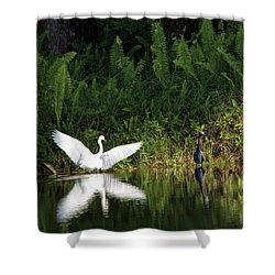 Little Blue Heron Non-impressed Shower Curtain