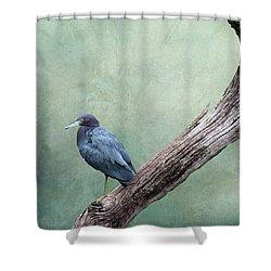 Little Blue Heron On Green Shower Curtain