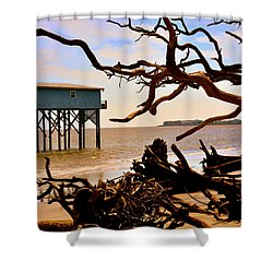 Little Blue Hunting Island State Park Beaufort Sc Shower Curtain