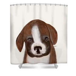 Shower Curtain featuring the painting Little Boxer by Bri B