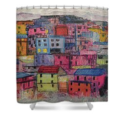 Little Boxes 2016 Shower Curtain by Ron Richard Baviello