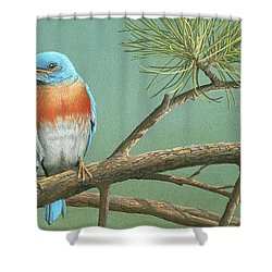 Shower Curtain featuring the painting Little Boy Blue by Mike Brown
