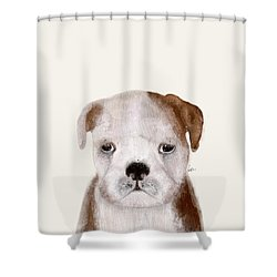 Shower Curtain featuring the painting Little Bulldog by Bri B
