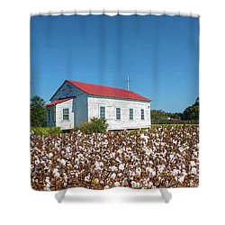 Little Church In The Cotton Field Shower Curtain by Bonnie Barry