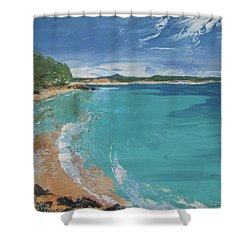 Shower Curtain featuring the painting Little Cove View by Chris Hobel