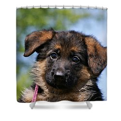Little Darling Shower Curtain by Sandy Keeton