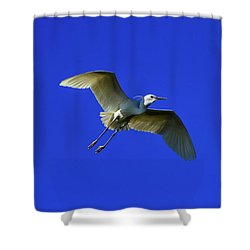 Little Egret, Egretta Garzetta Shower Curtain