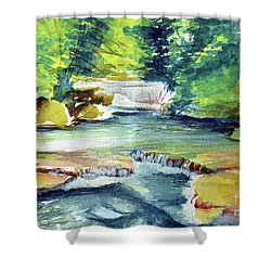 Little Falls Shower Curtain