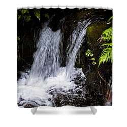 Little Falls Shower Curtain by Christopher Holmes