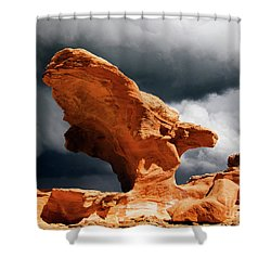Shower Curtain featuring the photograph Little Finland Nevada 8 by Bob Christopher