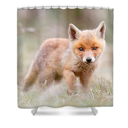 Little Fox Kit, Big World Shower Curtain by Roeselien Raimond
