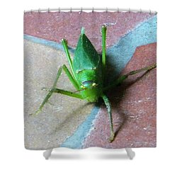 Shower Curtain featuring the photograph Little Grasshopper by Denise Fulmer