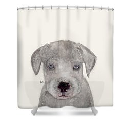 Shower Curtain featuring the painting Little Great Dane by Bri B