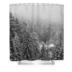 Little House In The Deep Forest Shower Curtain by Colleen Williams