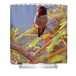 Little Jewel With Wings Shower Curtain