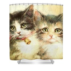 Little Kittens Shower Curtain